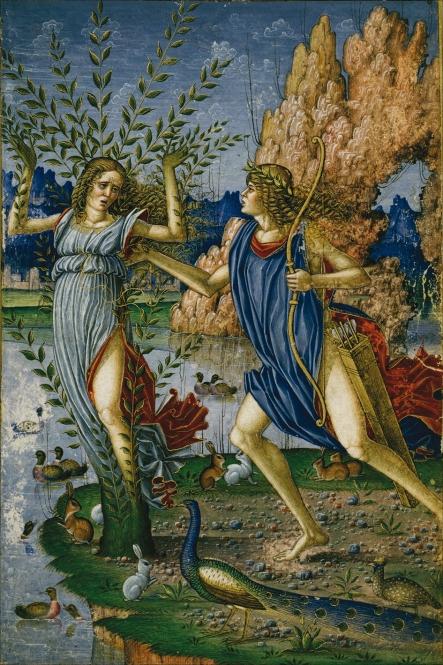 4. Miniatura de Apolo y Dafne. Herzog-August Bibliotheke. Wolfenbüttel. 1500 ca