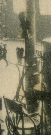 PELAYO 40 INTERIOR 1912 det